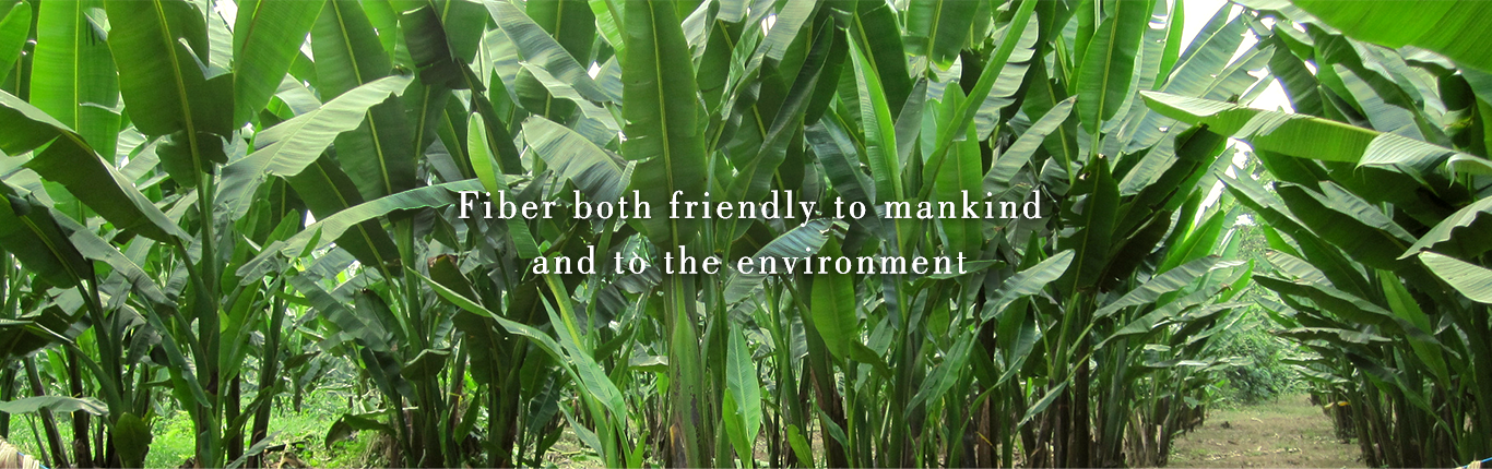 Fiber both friendly to mankind and to the environment